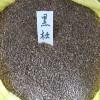 黑松种子,油松种子