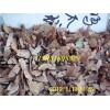 青楓紅楓雞爪槭等種子的供應信息三角楓五角楓楓楊種子的價格行情