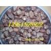小叶香樟种籽价格小叶朴树种籽供应信息小叶女贞种籽价格行情