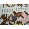 糖槭枫杨青枫红枫种子价格三角枫五角枫鸡爪槭的种植方法