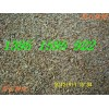 进口四季青草皮种子国产四季青草坪种子种植方法说明