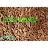 绿色生态护坡首选紫穗槐狗牙根黑麦草百喜草狼尾草苜蓿草多花木兰