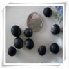 特价批发优质林木花卉种子 无患子种子