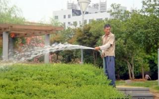 園林苗木水分管理的意義