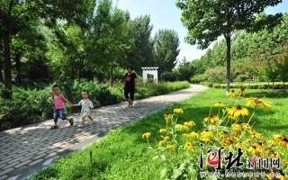 河北保定:园林绿化完成植树432万株