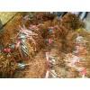 烟台红灯樱桃苗 粗度3厘米樱桃树苗价格