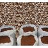 供应优质八棱海棠沙藏种子