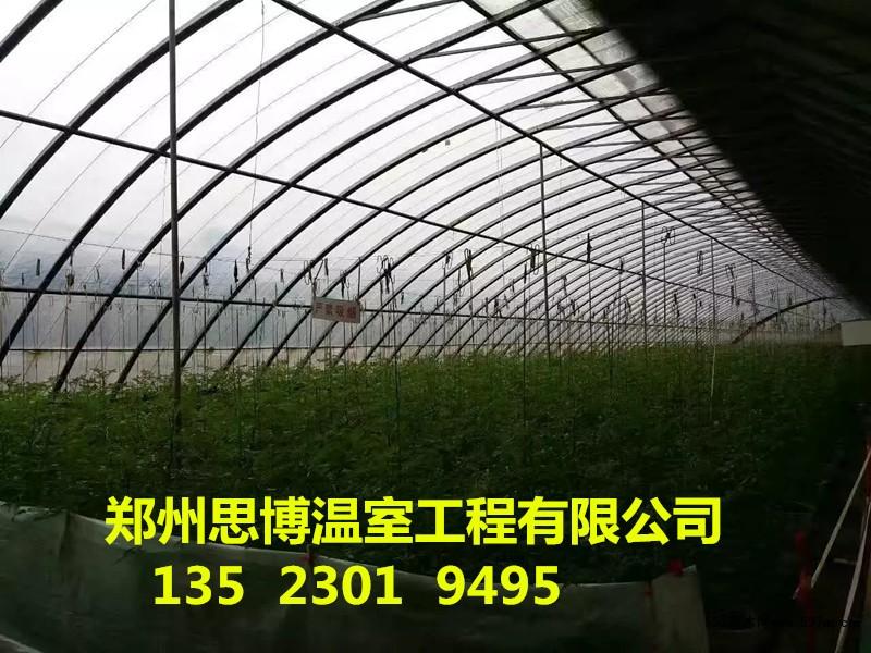 山西日光温室大棚设计安装施工建造价格|框架结构