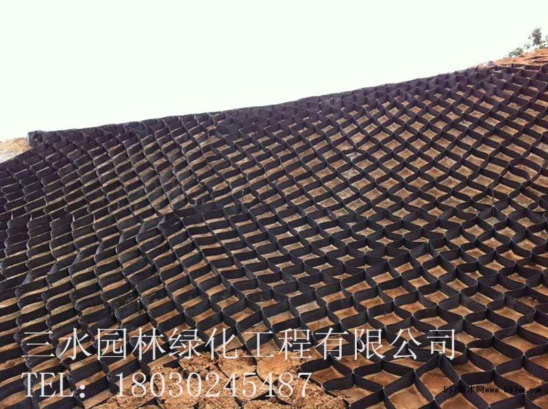 绵阳蜂巢网格植草护坡工程框格植草防护施工工艺