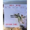福建红叶石楠杯苗价格,浙江红叶石楠供应,红叶石楠袋苗报价