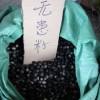 批发无患子种子##无患子种子价格¥¥江西种子价格#