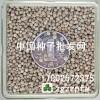 蔬菜紫苏 绿苏 甜罗勒 大叶荆芥 九层塔种子价格 播种方法