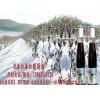 冰葡萄酒 生财有道 20170109 冰雪经济集安冰葡萄酒