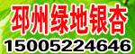 邳州绿地银杏苗木购销中心部