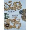 哪里有澳洲燕麦种子皮燕麦种子价格雁麦种子全国包邮