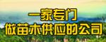 沭阳县万绿园林绿化苗木场