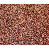 求购山丁子种子1万斤