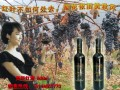 美的庄园2003冰葡萄酒 (3图)