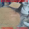 供应批发樱桃种子价格 樱桃种植技术管理方法