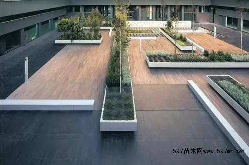 行业资讯 时事新闻 03 正文   种植池是栽种植物的园林景观构筑物