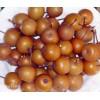 棠梨子供应,杜梨子产地,哪里杜梨子便宜,山西哪里有棠梨子