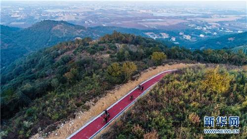近年来,浙江省长兴县龙山街道充分利用山村的自然资源,依托红梅,杨梅
